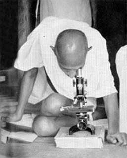 Gandhi studying leprosy germs at Sevagram Ashram. 1939.