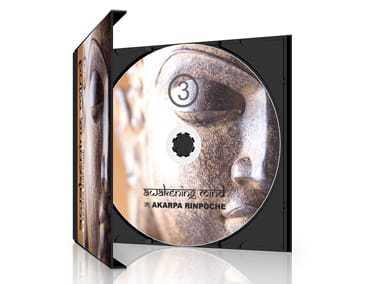 Awakening Mind 3, by Akarpa Rinpoche